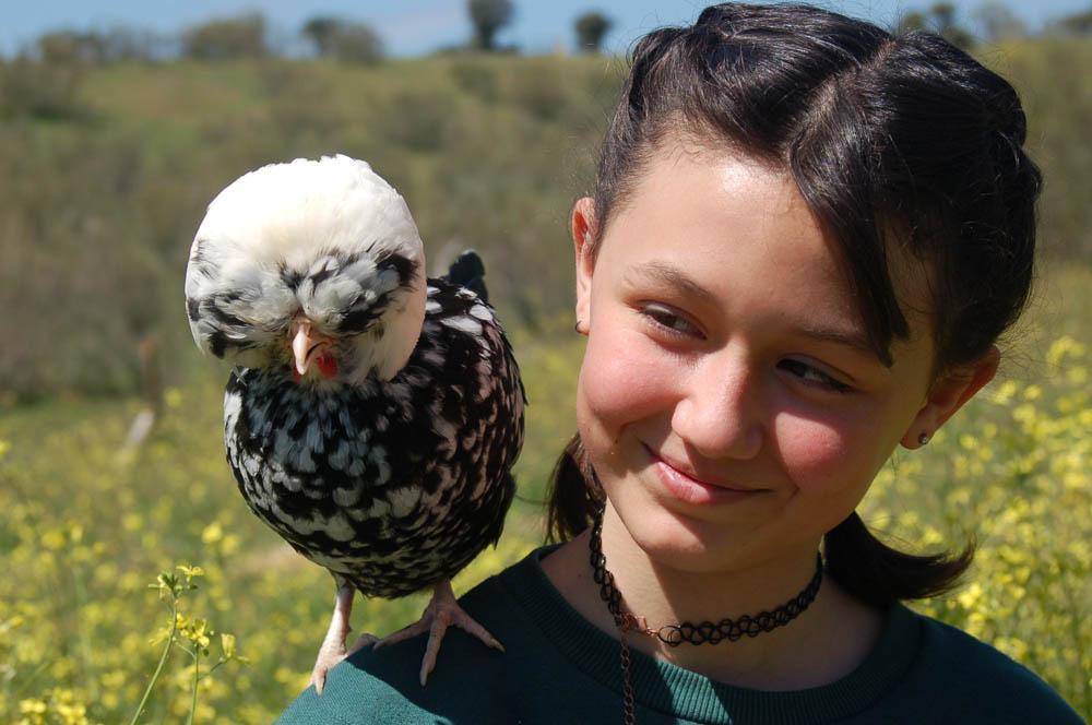 Niña con gallina posada en el hombro foto a color